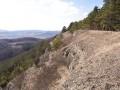 Kalkschutthalden der Mittelgebirge