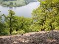 Silikatschutthalden der Mittelgebirge