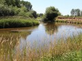 Tieflandflüsse