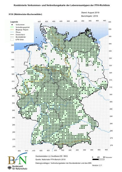 buchenwälder in deutschland karte Waldmeister Buchenwald – Deutschlands Natur